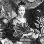 Maria Sibylla Merian c. 1700, from a portrait by Georg Gsell.